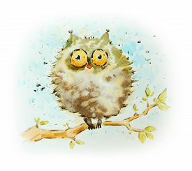 Funny Owl Sitting On The Tree. Watercolor Painting.