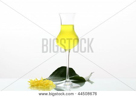 limoncello cocktail with lemon