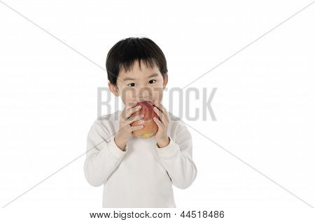 Cute little boy eating an apple with white background