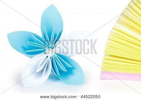 Paper record and flower