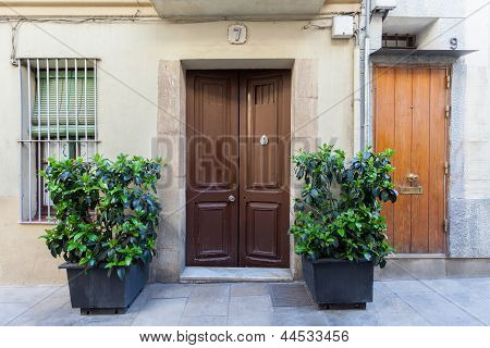 Ground Level Home With Plants