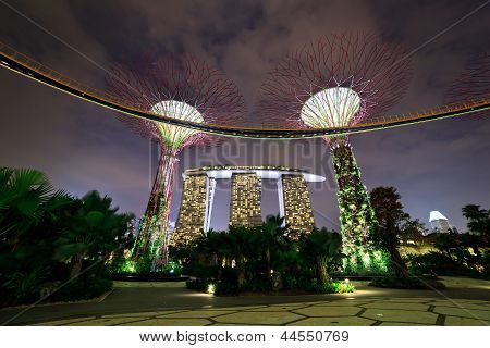 Nightscape of The Supertree at Gardens by the Bay