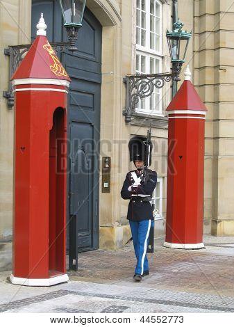 Royal Guard guarding Amalienborg Castle in Copenhagen, Denmark