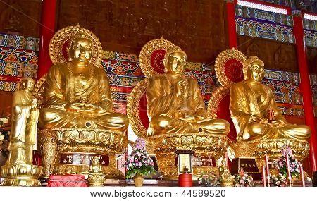 Three Golden Statue Of Buddha