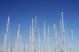 Boat masts with clear blue sky