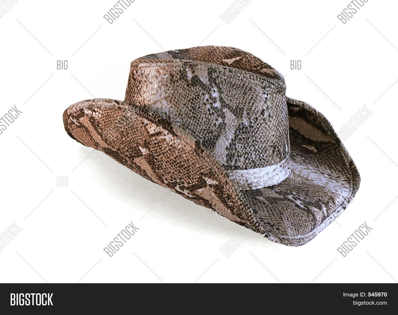Python Cowboy Hat Image   Photo (Free Trial)  a8cbe96edd2