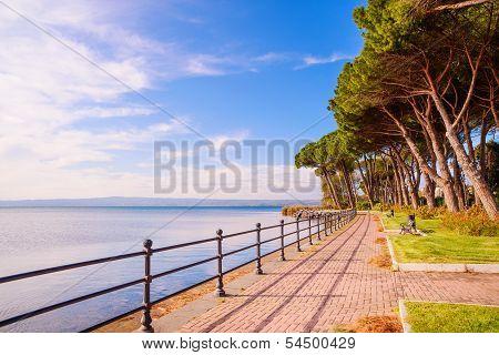 Promenade And Pine Trees In Bolsena Lake, Italy.