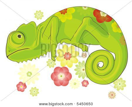 Chameleon And Flowers
