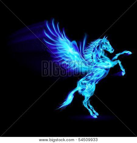 Blue fire Pegasus rearing up