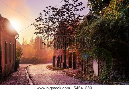 Morning Cobbled Street