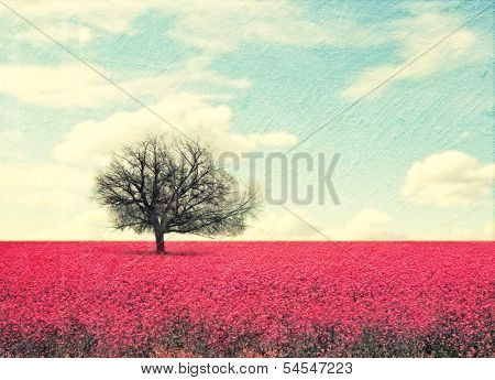 a beautiful tree in a red field