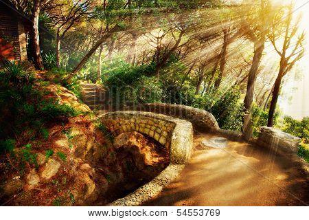 Mystical Park. Old Trees and Ancient Stone Bridge. Pathway. Misty Forest. Fantasy Landscape