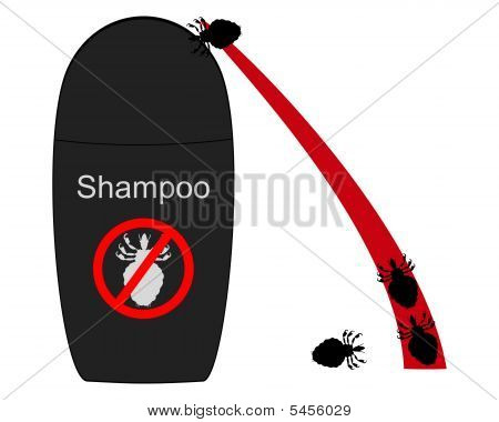 Lice Shampoo And Hair With Lice On White Background