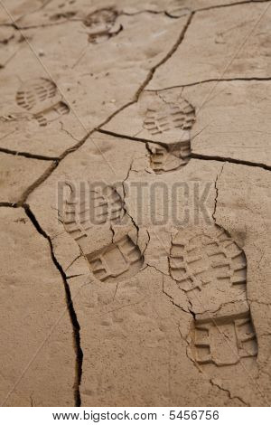 Footprints In Cracked Earth