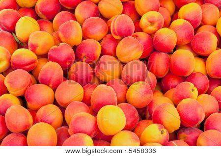 Apricots At Market