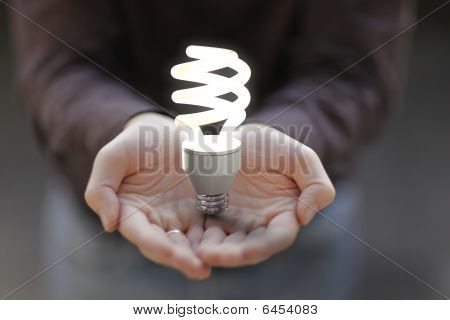Energy-saving bulb on Nurturing Hands
