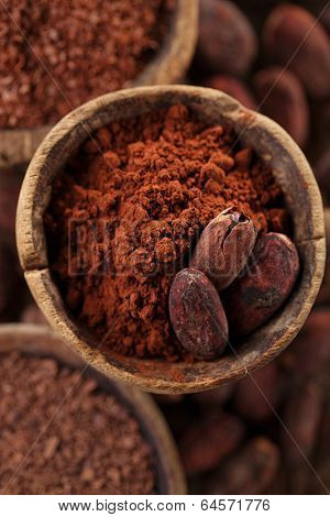 cocoa powder and roasted cocoa beans  in old spoon spoon  background