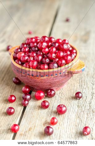 Bowl With Fresh Cranberries