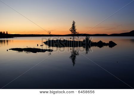 Alone Pine On Island