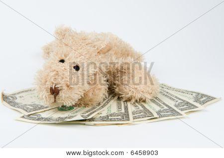 Dog after money