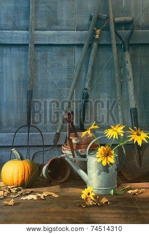 Pumpkin and flowers with tools in garden shed