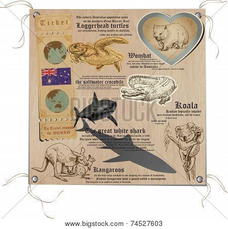 Australia - Pictures Of Life