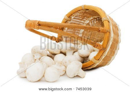 Wattled Basket With Field Mushrooms Isolated