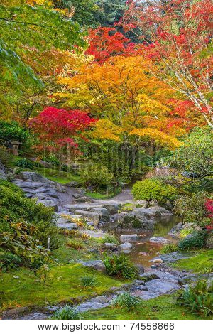 Vertical image of autumn colors and meandering rocky stream with small waterfall. poster