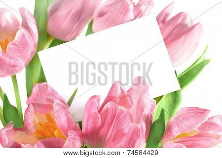 bouquet of the fresh pink tulips with a blank gift tag