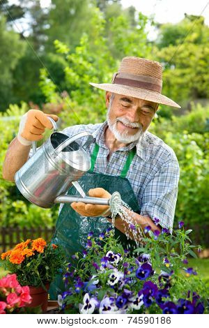 Portrait of senior man watering flowers