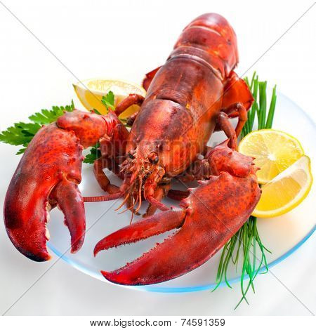 lobster on dish with parsley and lemon slices