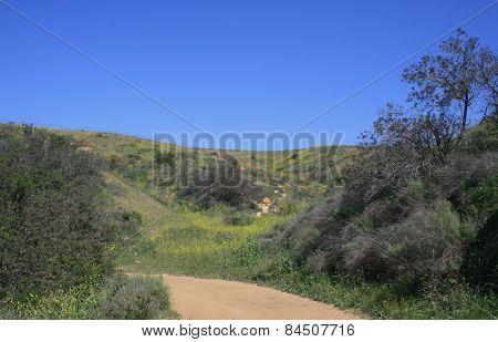 Horseshoe Trail