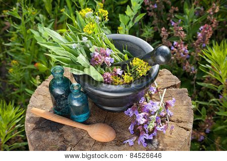 Mortar With Healing Herbs And Sage, Bottles Of Essential Oil In Garden. Herbal Medicine.