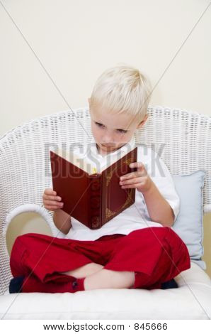 early reader