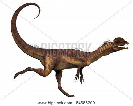 Dilophosaurus Profile