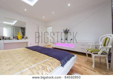 Contemporary bedroom Interior