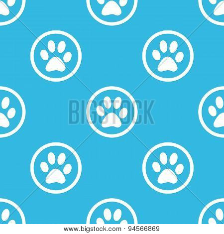 Paw sign blue pattern