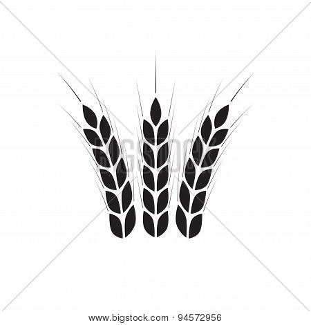 Wheat ears icon. Crop or agricultural symbol.