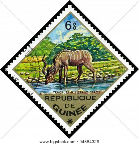Vintage  Postage Stamp. Greater Kudu To Africa.