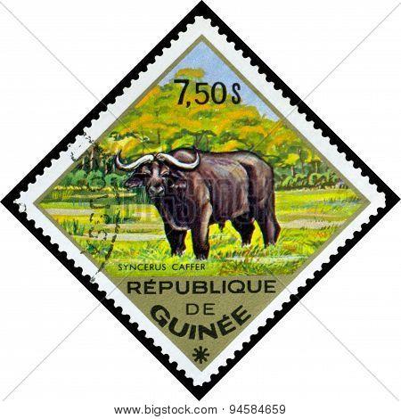 Vintage  Postage Stamp. Buffalo, Africa.