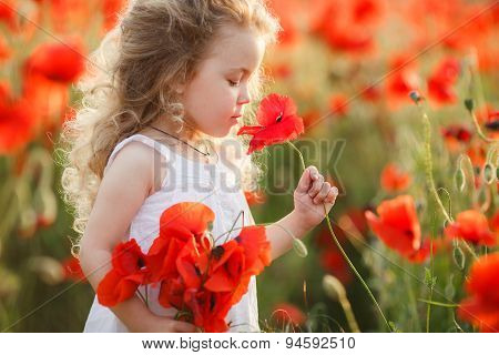 A little girl in a field of red poppies