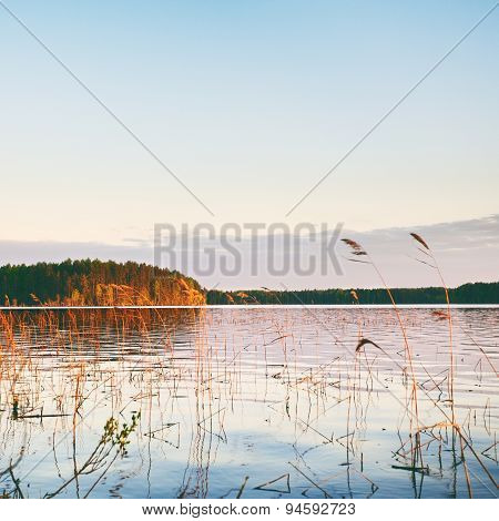 Evening on a Lake