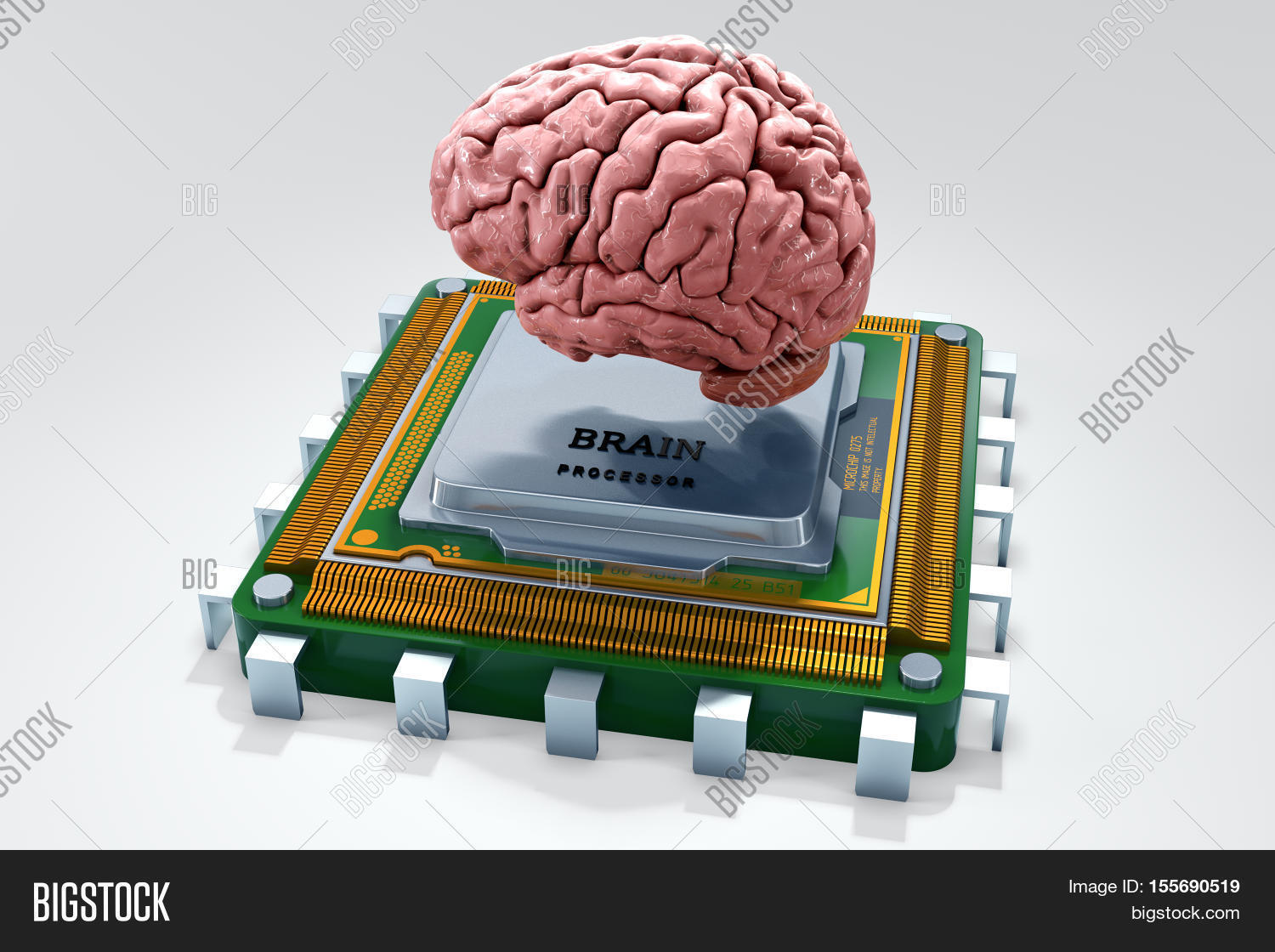 human brain computer image \u0026 photo (free trial) bigstockhuman brain with computer processor isolated on white concept 3d render illustration