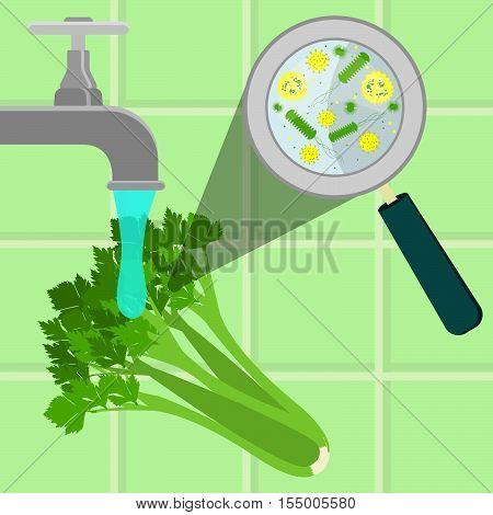 Washing Contaminated Celery