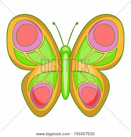 Butterfly with long wings icon. Cartoon illustration of butterfly vector icon for web design