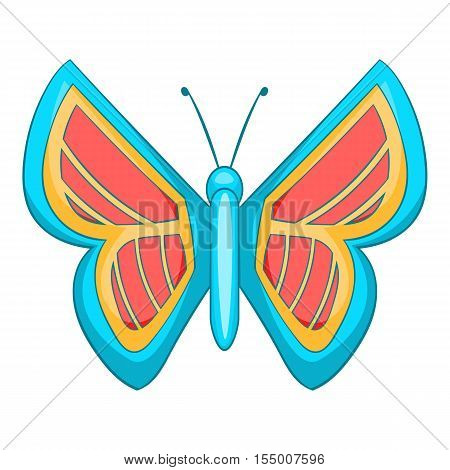 Blue and red butterfly icon. Cartoon illustration of butterfly vector icon for web design