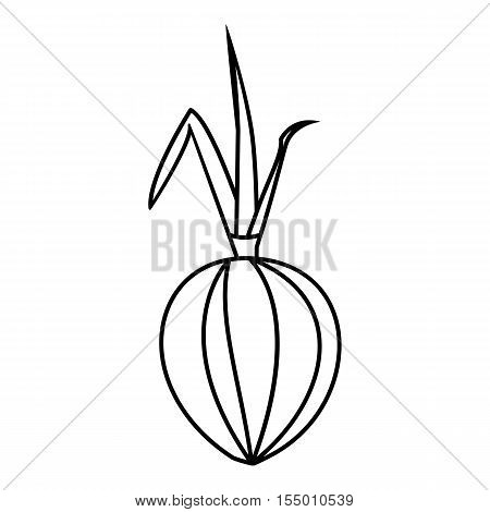 Onion icon. Outline illustration of onion vector icon for web
