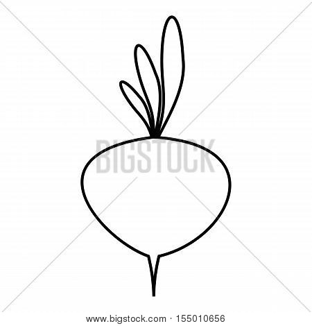 Turnip icon. Outline illustration of turnip vector icon for web