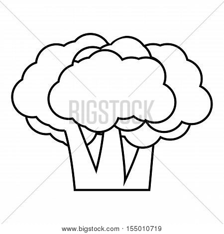 Broccoli icon. Outline illustration of broccoli vector icon for web