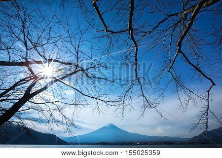 Mt Fuji in fall at lake Kawaguchiko Japan